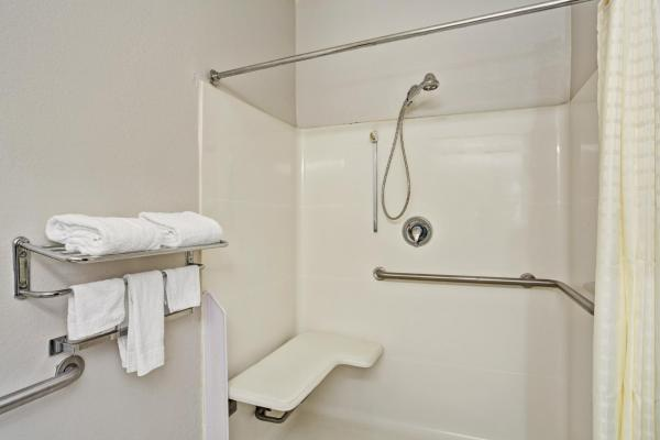 Non Smoking Handicap Queen Suite Bathroom